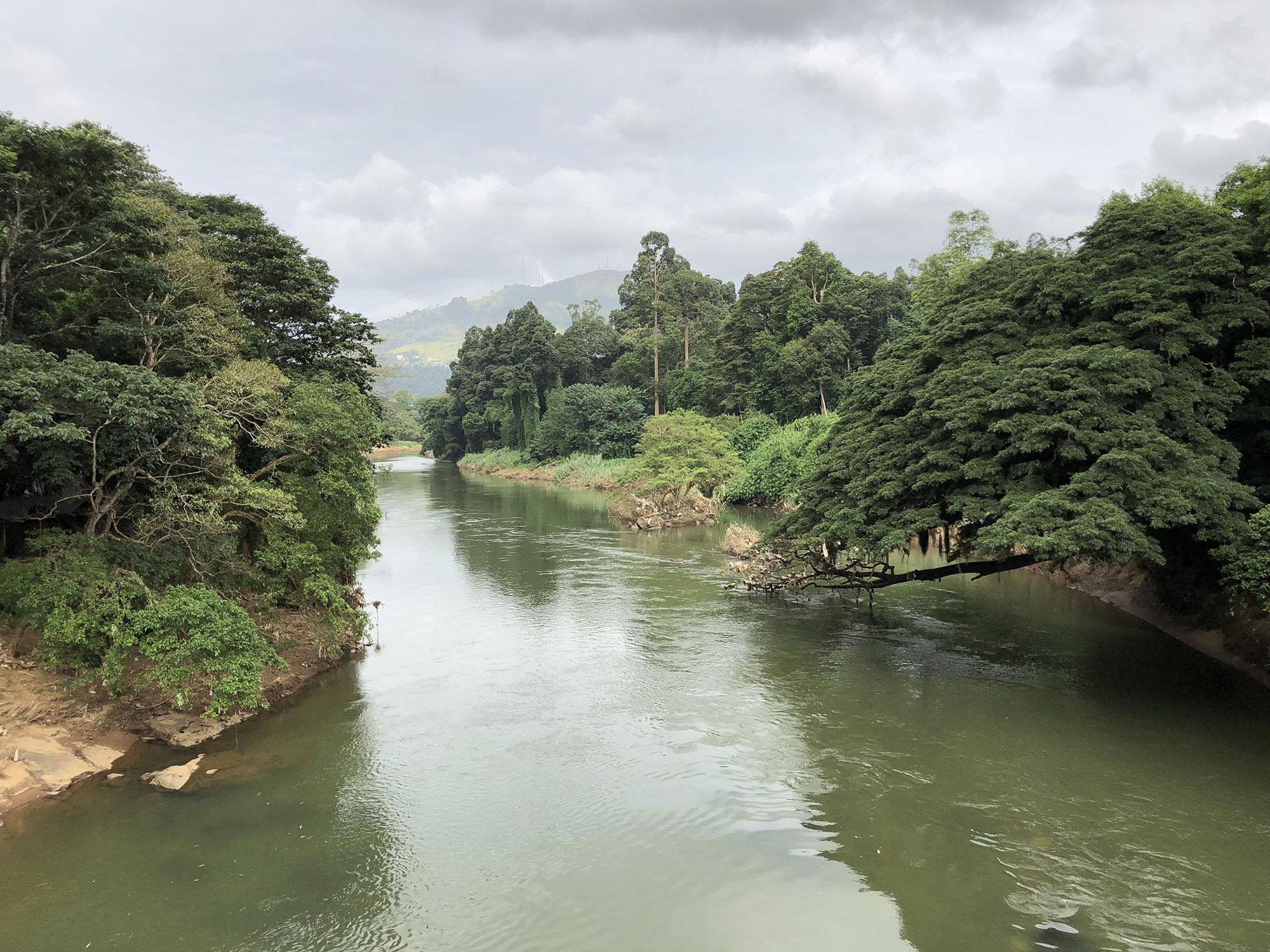 centre-yoga-om-shanthi-sri-lanka-paysage